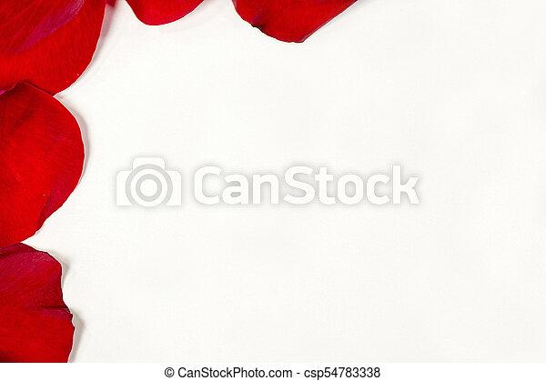 La frontera de pétalos de rosa roja - csp54783338