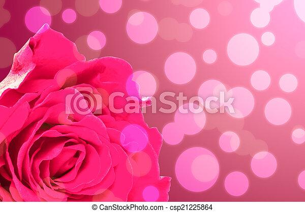 Rose - csp21225864