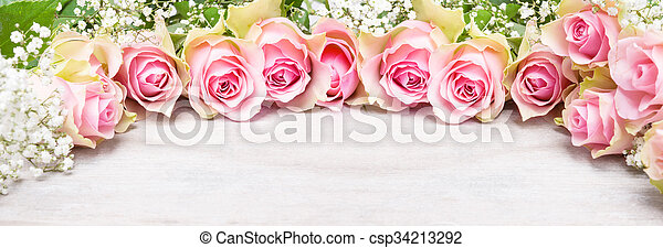 rosa, karte, atem, babys, gruß, rosen, banner - csp34213292