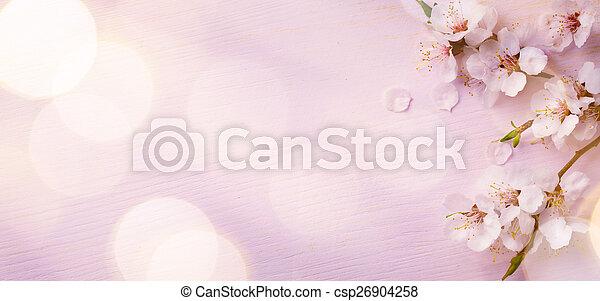 rosa, kunst, blüte, fruehjahr, hintergrund, umrandungen - csp26904258