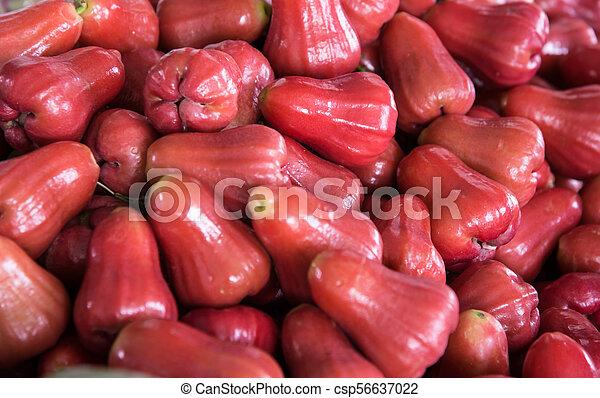 Manzana rosa roja - csp56637022