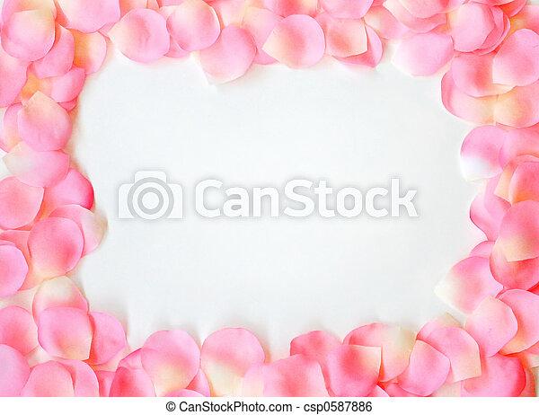 Un pétalo rosa - csp0587886