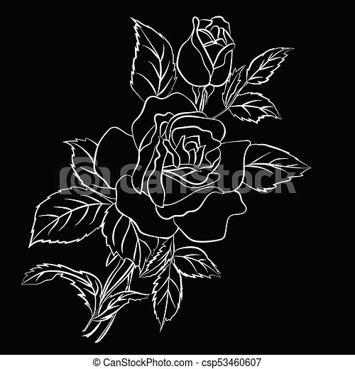 Rosa Schizzo Nero Sfondo Bianco Illustration Rosa Contorno