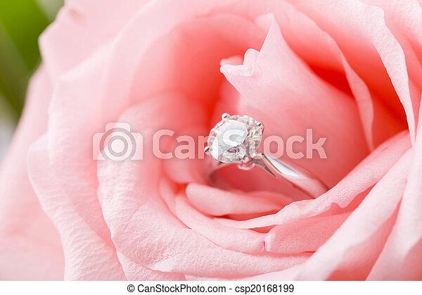 rosa subió, anillo, diamante - csp20168199