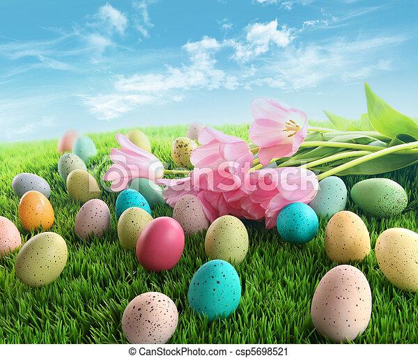 Huevos de Pascua con tulipanes rosas en la hierba - csp5698521
