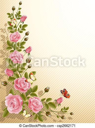 Rosas - csp2662171