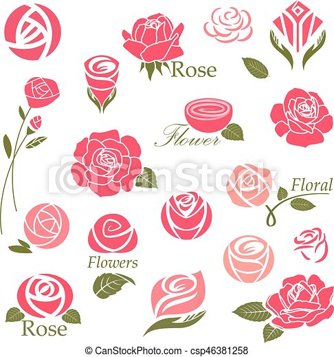 Diseño Rosa 377d34562957c