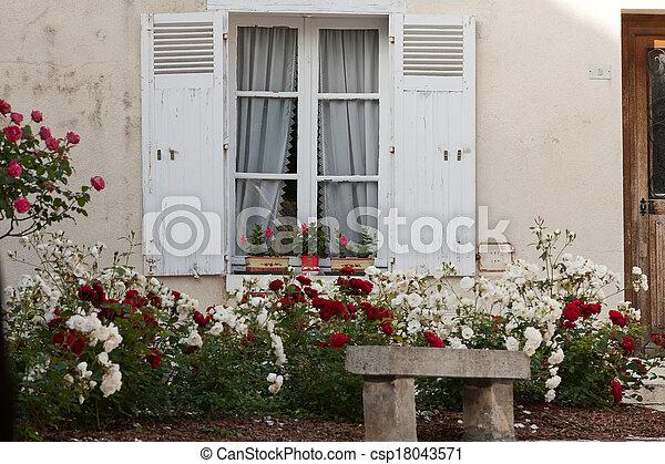 Ventana blanca con flores de geranio y rosas - csp18043571