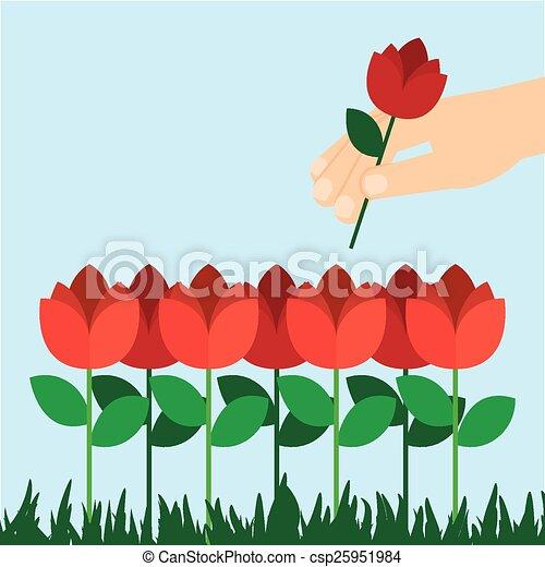 El jardín de rosas. Diseño de jardín de rosas, ilustración ...