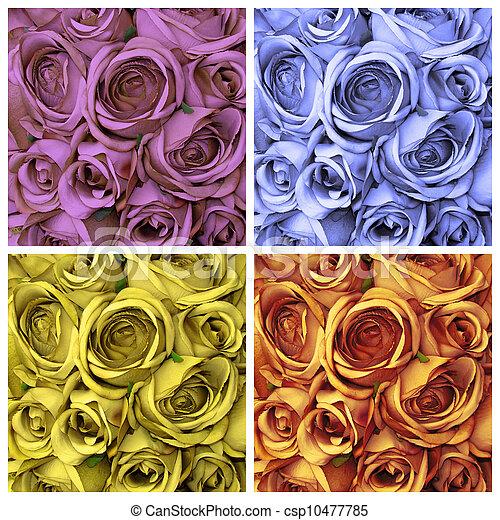 rosas, jogo - csp10477785