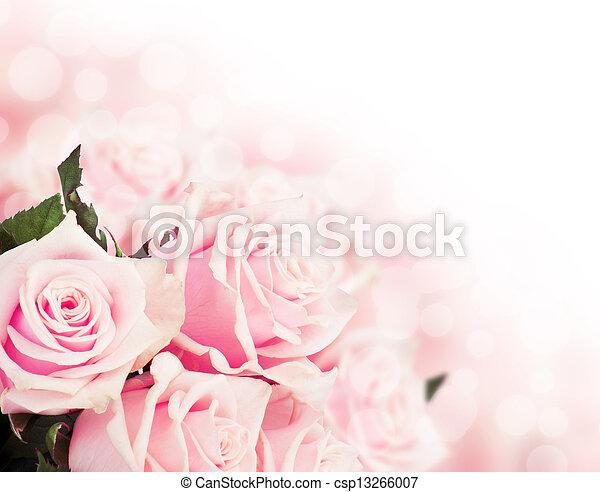 rosas rosa - csp13266007