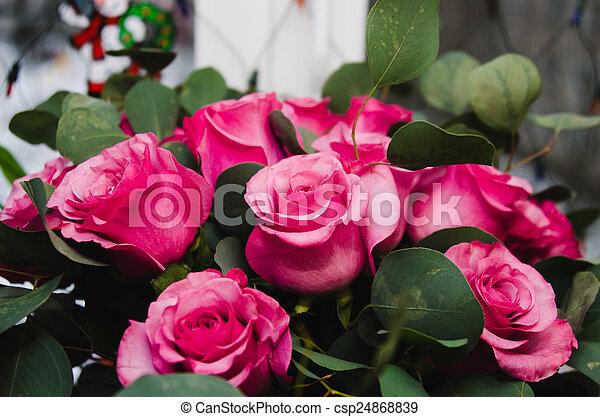 rosas rosa - csp24868839