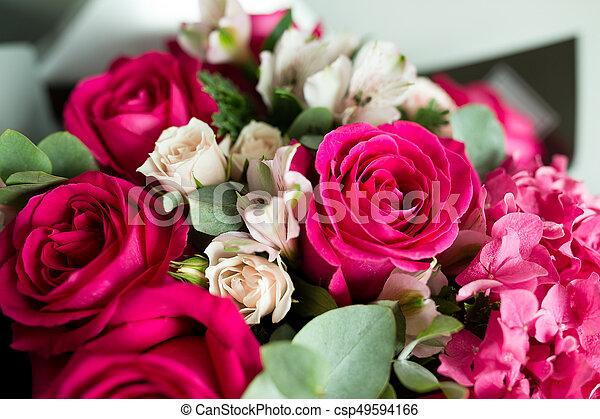 rosas rosa - csp49594166