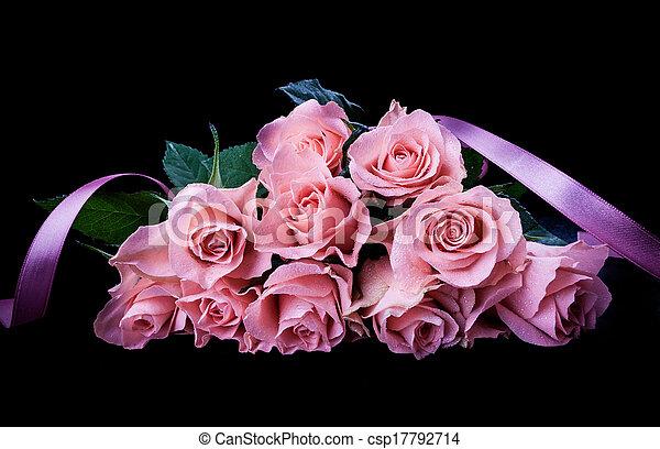 rosas rosa - csp17792714