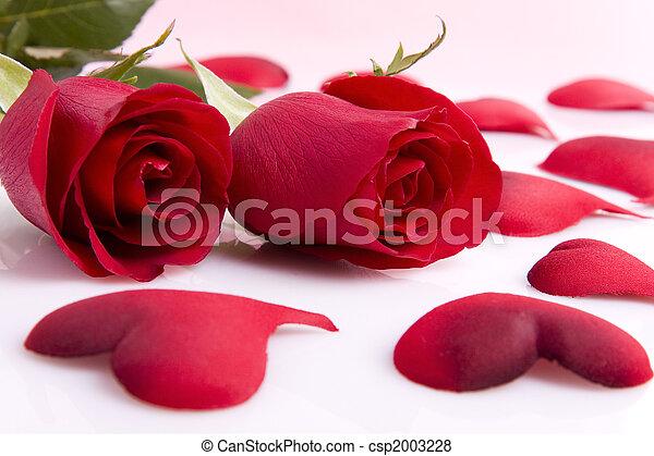 rosas y corazones csp2003228