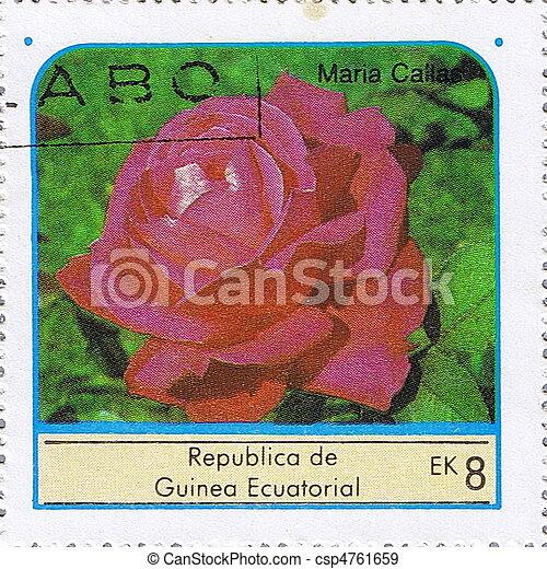 rose, 3 - csp4761659