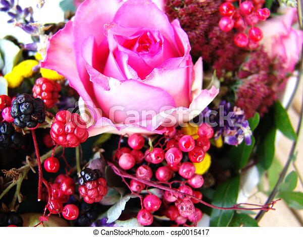 Rose and berrries - csp0015417