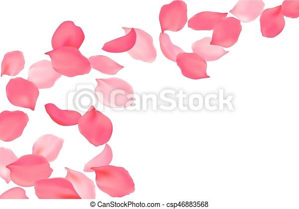 Rose blossom p tales rose voler clair illustration clip art vectoriel rechercher - Petale de rose comestible ...