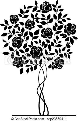 Rose bush. - csp23550411