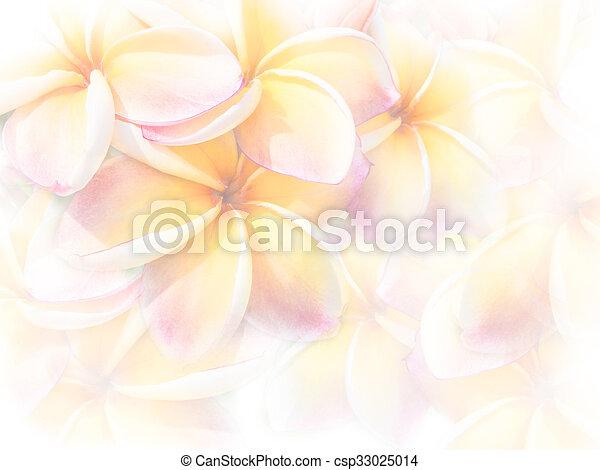 Rose Couleur Frangipanier Plumeria Doux Fleurs Ou Rose Style