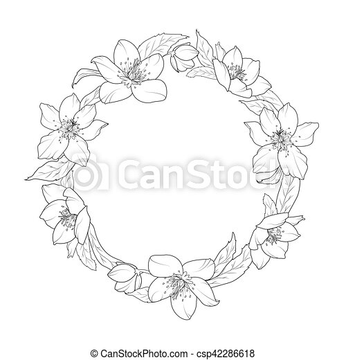 Rose Couronne Ellébore Gabarit Fleurs Noël