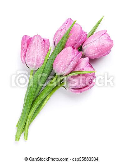 rose, fleurs fraîches, bouquet, tulipe - csp35883304