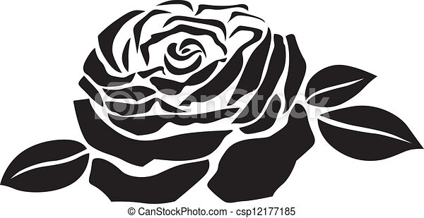 Line Art Rose Flower : Rose flower the stylized image of a lush roses with
