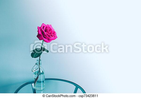 Rose flower in a bottle. - csp73423811