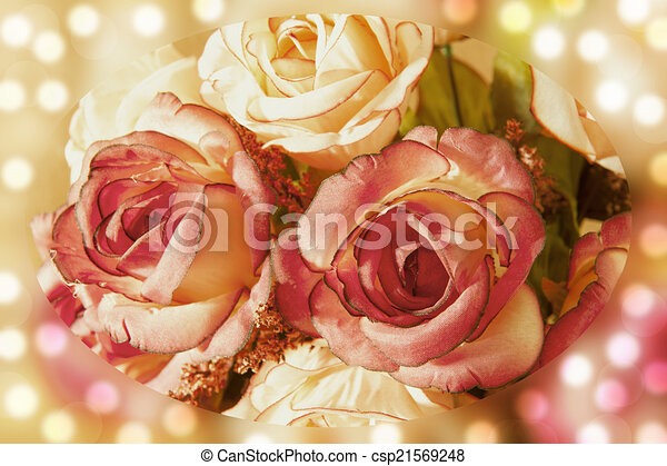 rose flowers - csp21569248
