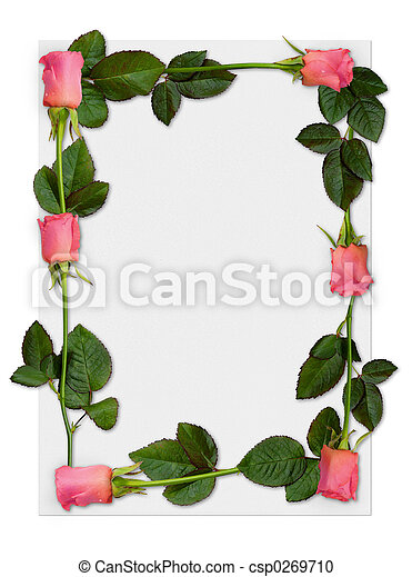 Rose frame 1. Sheet of paper with pink roses, love letter background ...