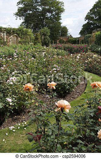 Rose Garden An English Country In Summer