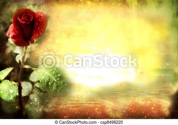 rose, grunge, carte rouge - csp8498220