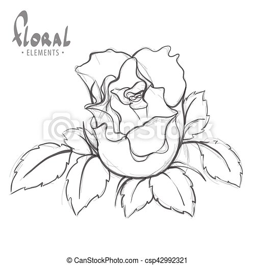 Rose painted schematically. Rose for children's creativity... vector on