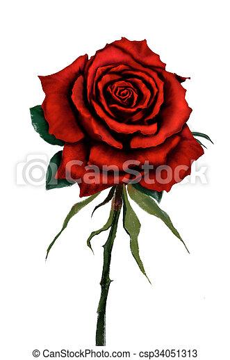 Rose Peinture Rouges Numerique Fleur Rose Numerique Peinture Original Rouges Canstock