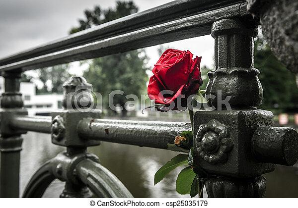 Rose Red Stream German