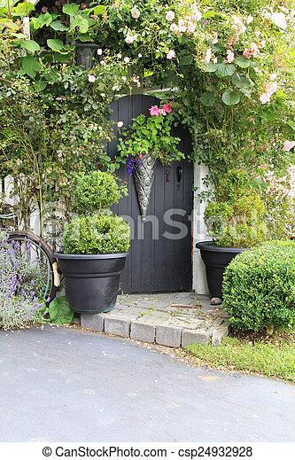rose, porte jardin - csp24932928