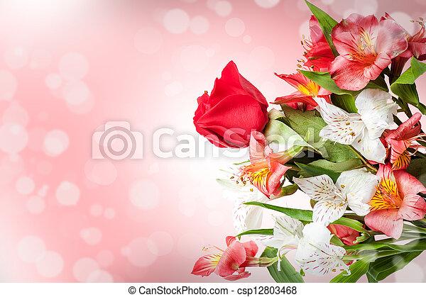 rose, printemps, fleurs blanches, doux - csp12803468