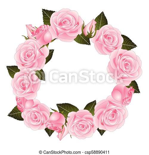Rose Rose Fleur Couronne Fleur Rose Illustration Rose Isole