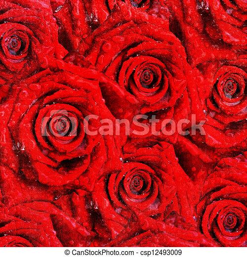 rose, rosso - csp12493009