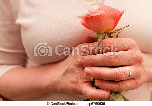 rose - csp6760636