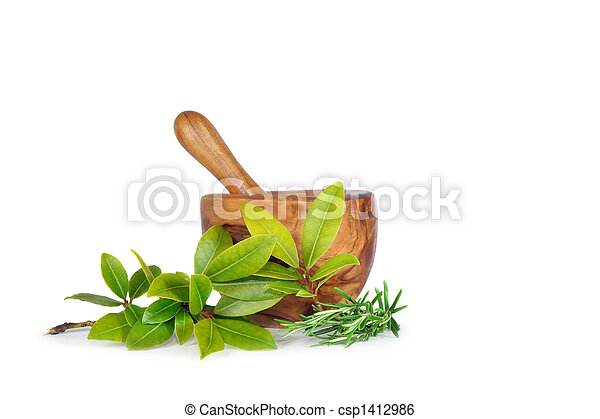 Rosemary and Bay Herb Leaves - csp1412986