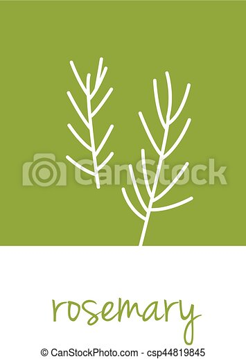 rosemary icon on green square - csp44819845