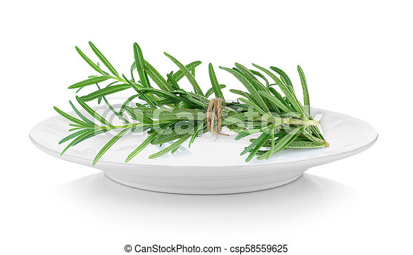 rosemary in plate on white background - csp58559625