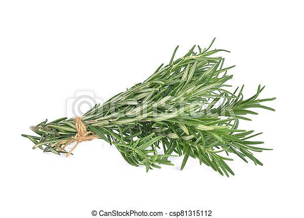 Rosemary isolated on white background - csp81315112