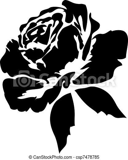 rosen, schwarz - csp7478785