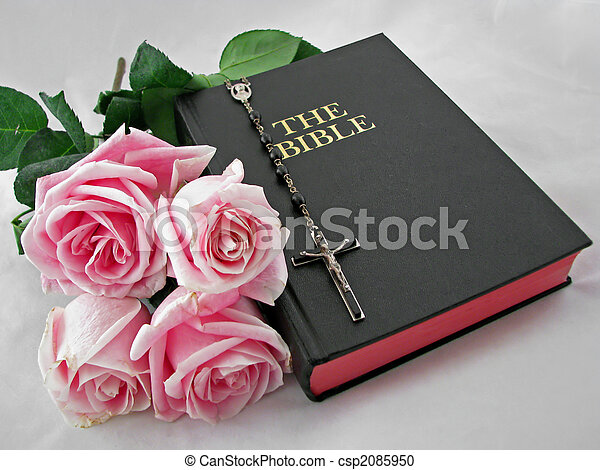 Roses Bible Rosary A Rosary Cross Pink Roses And Bible