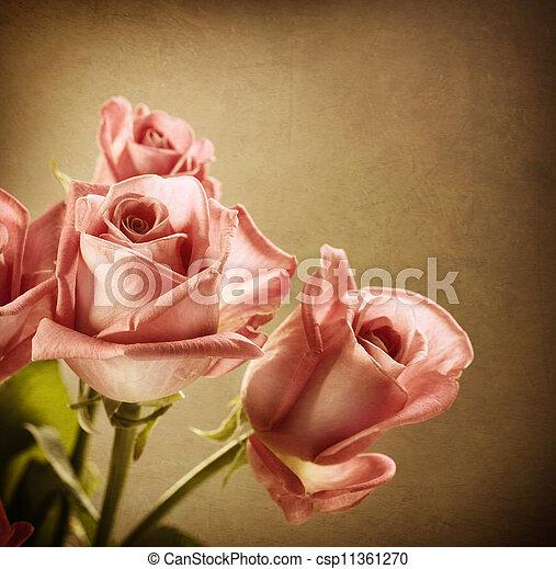 roses., toned, sepia, ouderwetse , roze, mooi, styled. - csp11361270
