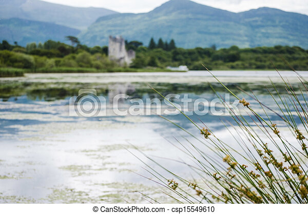 ross castle, killarney and reeds - csp15549610