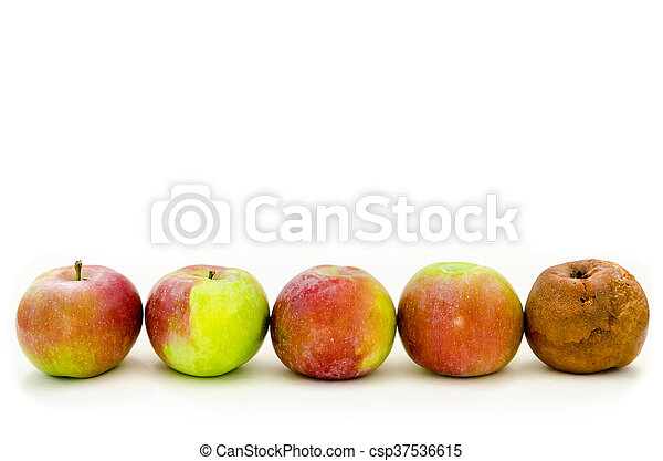 rotten apple - csp37536615