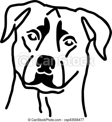 Rottweiler head - csp43556477